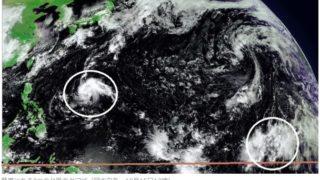 台風20号と21号のタマゴ
